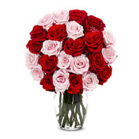 Diwali Flowers to Hyderabad to Send Red Pink Roses in Vase 24 Flowers in Hyderabad