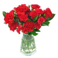 New Year Flowers Delivery in Hyderabad delivers Red Carnation Vase 10 Flowers