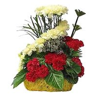 Same Day New Year Flowers to Hyderabad. Red Yellow Carnation Basket 24 Flowers