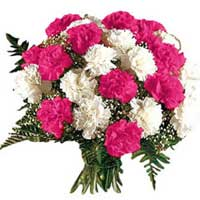 Wedding Flower Delivery Hyderabad : Pink White Carnations