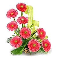 Same Day New Year Flowers to Secunderabad. Pink Gerbera Basket 12 Flowers in Hyderabad