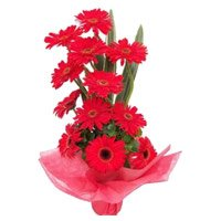 Online New Year Flowers to Hyderabad consist of Red Gerbera Basket 12 Flowers to Hyderabad