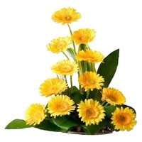 Send New Year Flowers to Hyderabad add up to Yellow Gerbera Basket 12 Flowers in Tirupati