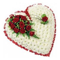 Buy Diwali Flowers to Hyderabad for your loved ones, 100 White Gerbera and 10 Red Roses Heart shape