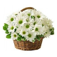 Online Bouquet Delivery to Narsapur. Send White Gerbera Basket of 50 Flowers to Narsapur