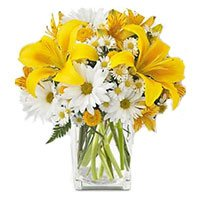 Same Day New Year Flowers to Hyderabad containing 3 Yellow Lily 9 White Gerbera in Vase