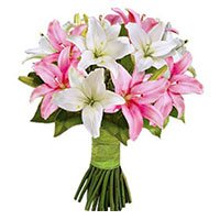 Online Flowers Delivery to Khammam. Deliver 6 Stems of Asiatic Pink and White Lily