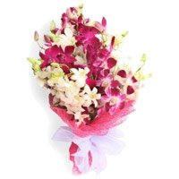 Orchids Flower Delivery in Hyderabad