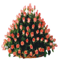 Online Flowers Delivery in Hyderabad