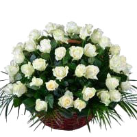 Online Flowers to Hyderabad : White Roses