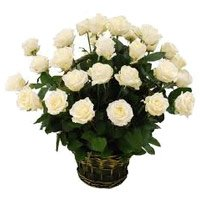 Deliver Flowers to Hyderabad : 24 White Roses Basket